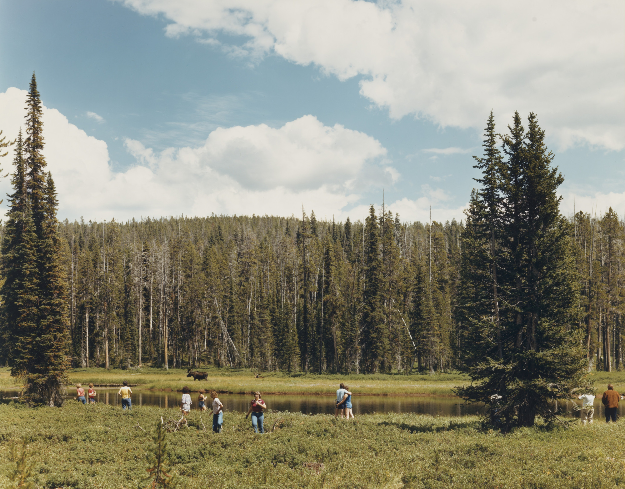 Joel Sternfeld. Yellowstone National Park. August 1979