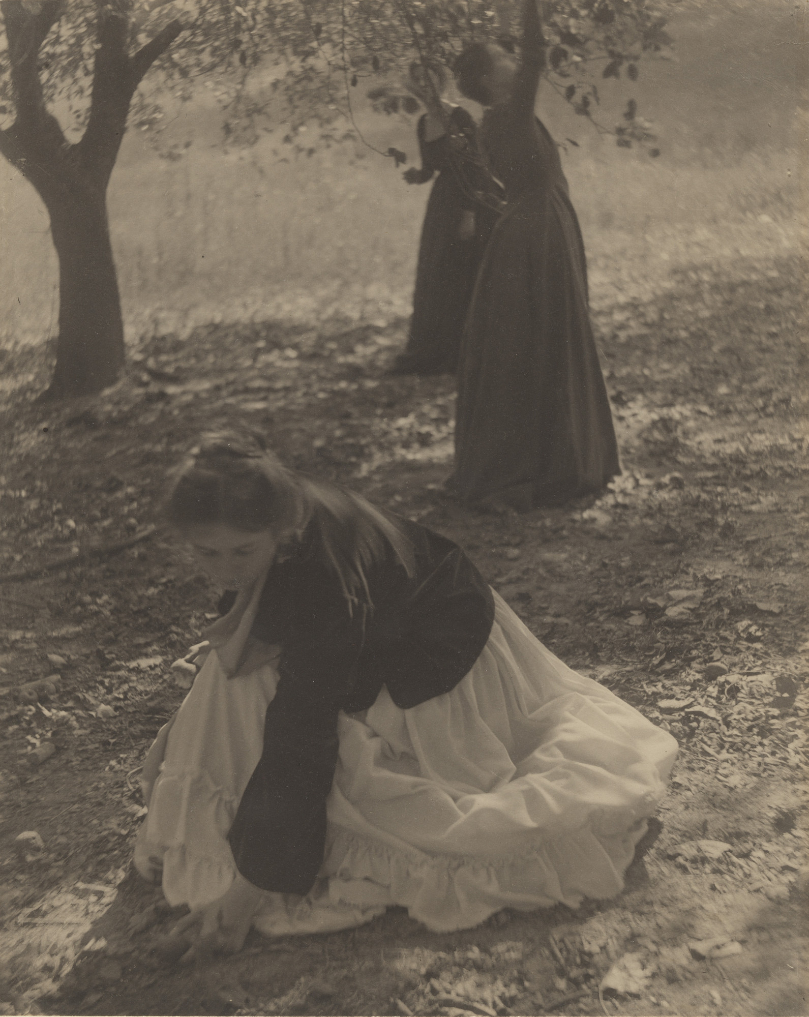 Clarence H. White. In the Orchard, Newark, Ohio. 1902