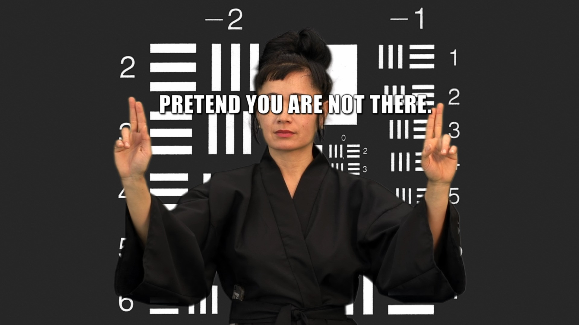 Hito Steyerl. How Not to Be Seen: A Fucking Didactic Educational .MOV File. 2013