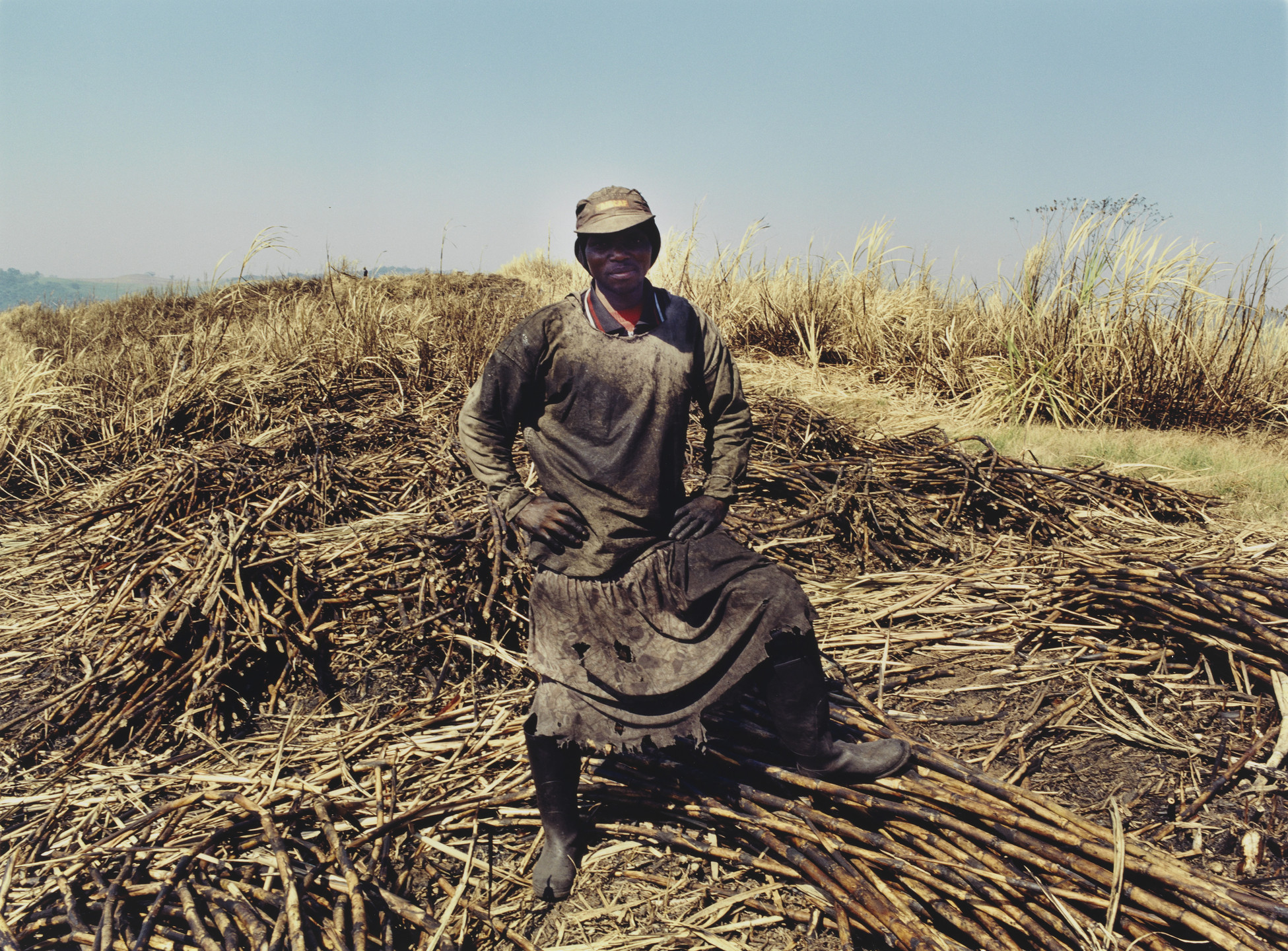 Zwelethu Mthethwa. Untitled, from the series Sugar Cane. 2003