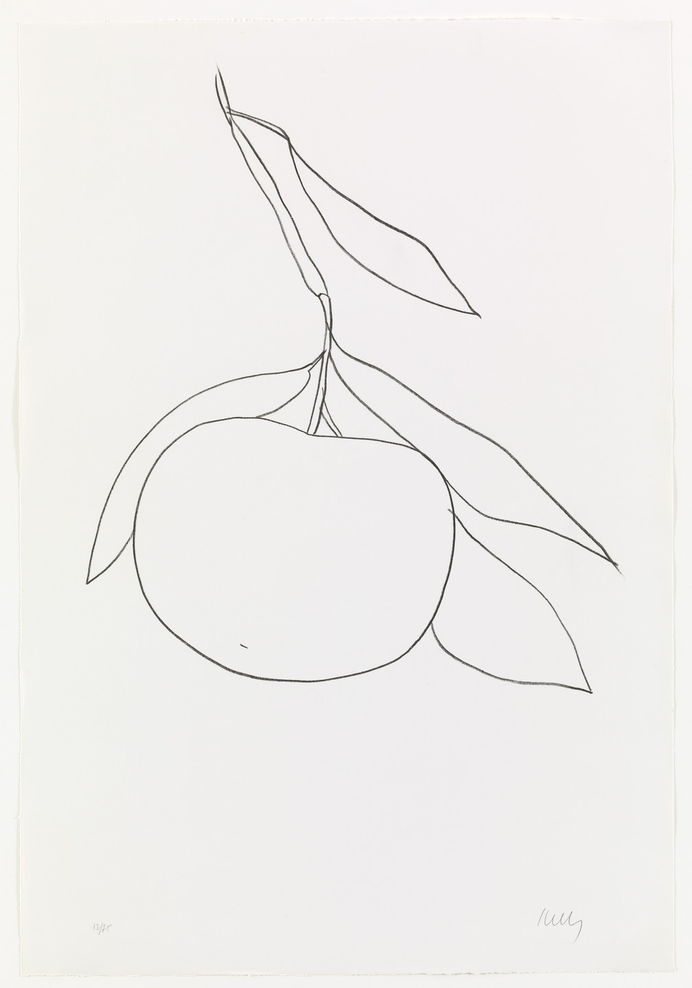 Ellsworth Kelly. Tangerine (Mandarine) from Suite of Plant Lithographs. 1964–65, published 1966