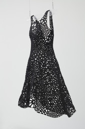 Jessica Rosenkrantz, Jesse Louis-Rosenberg. Kinematics Dress. 2013