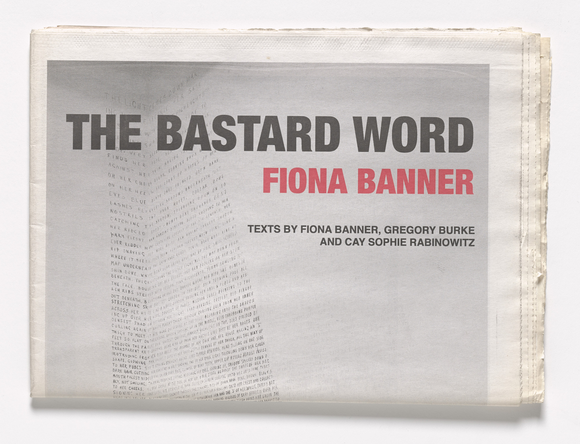 Fiona Banner. The Bastard Word. 2007