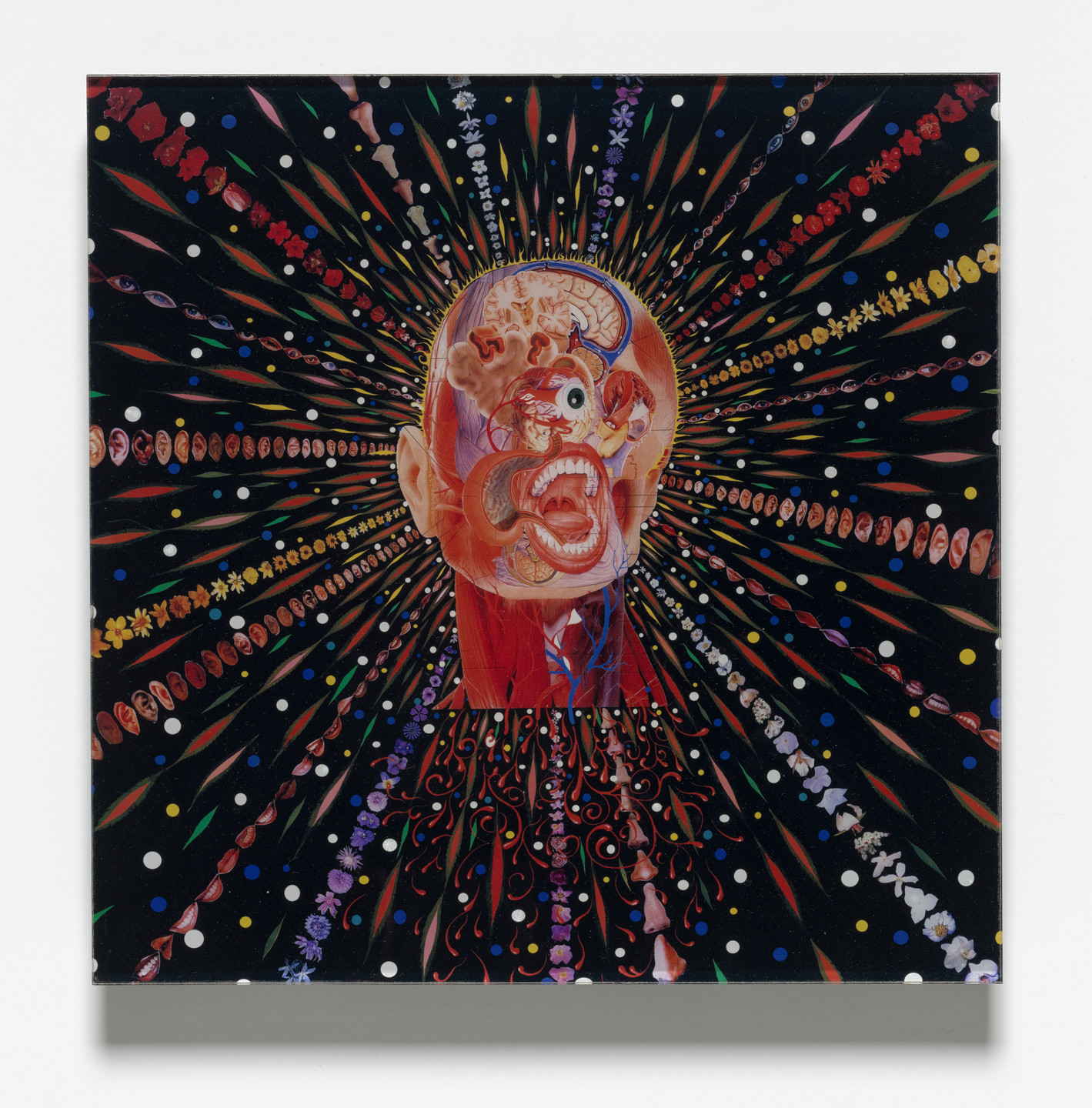 Fred Tomaselli. Cyclopticon for Parkett 67. 2003