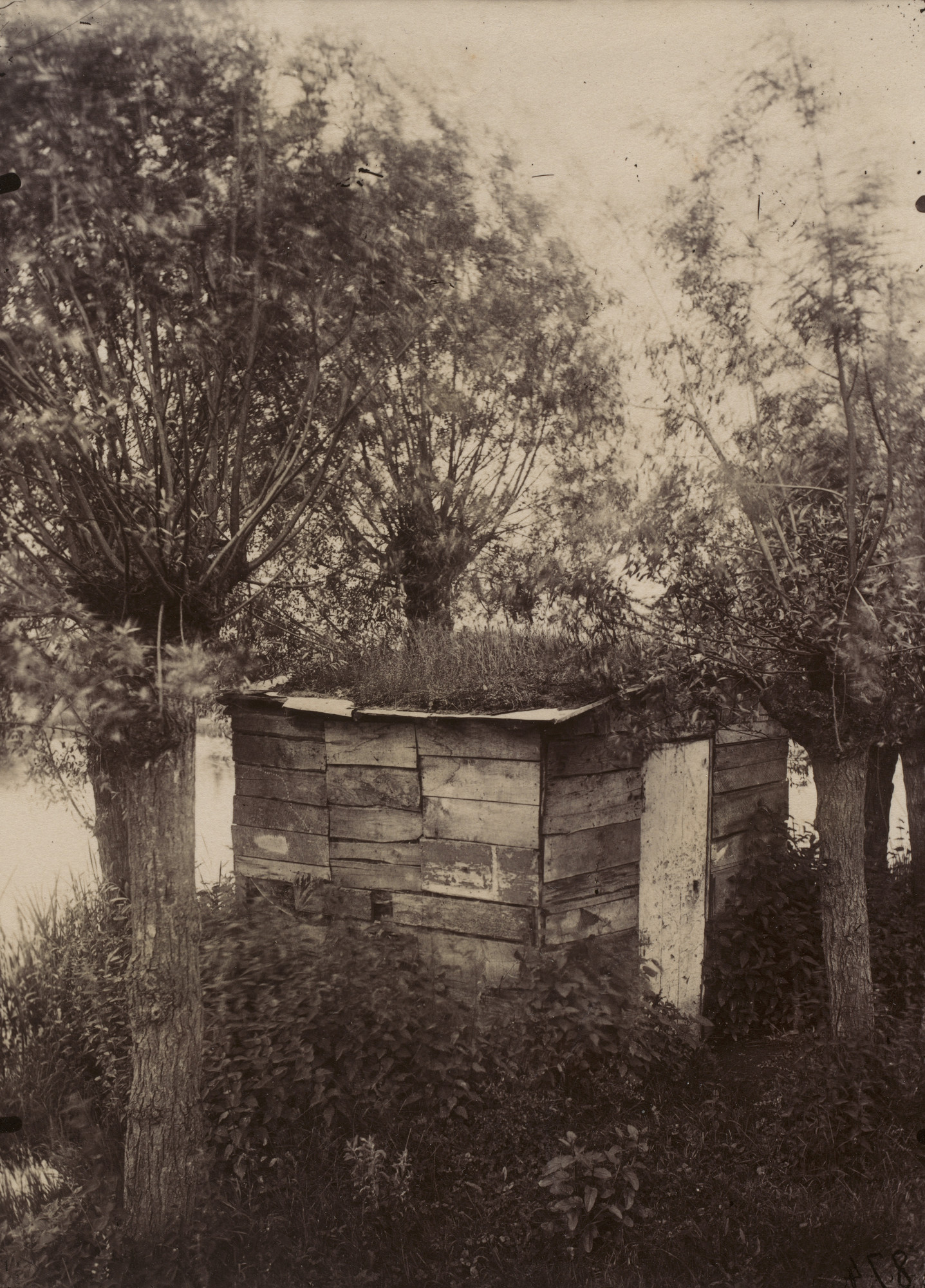 Eugène Atget. Untitled [Hut Among Willows]. Probably before 1898