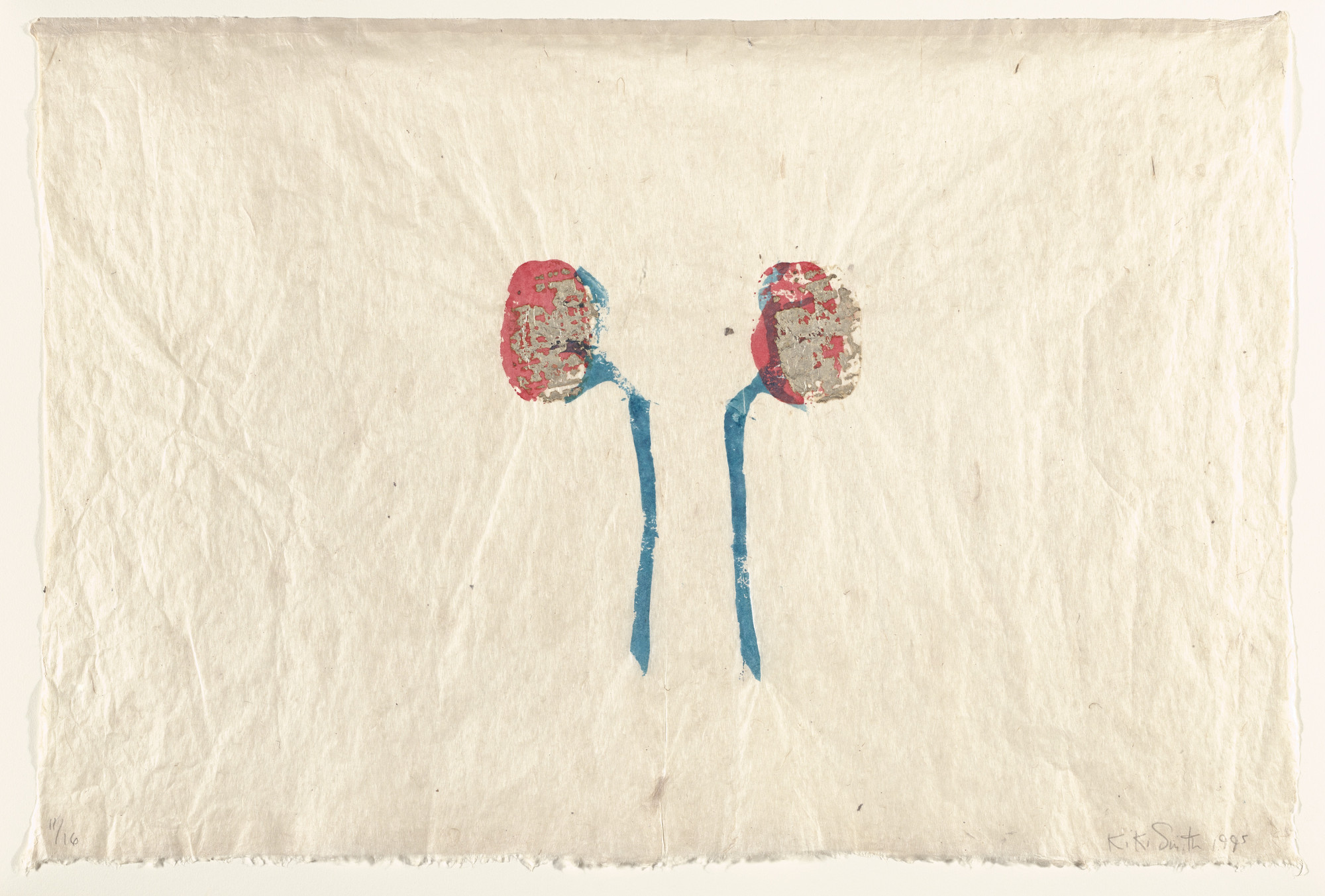 Kiki Smith. Untitled (Kidneys). 1995