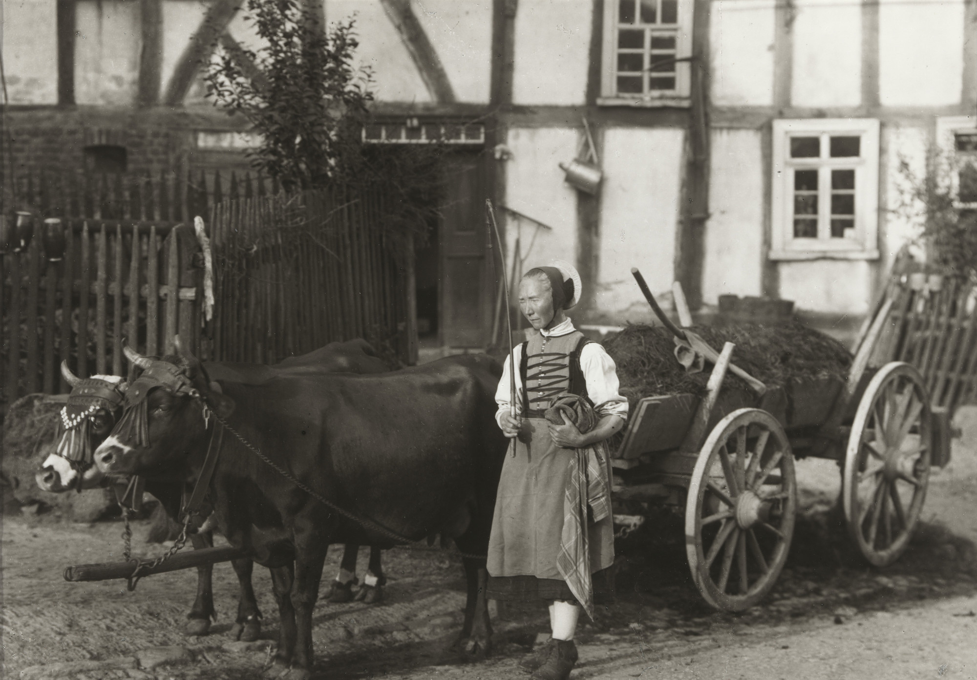 August Sander. Farm Girl, Hesse. 1913