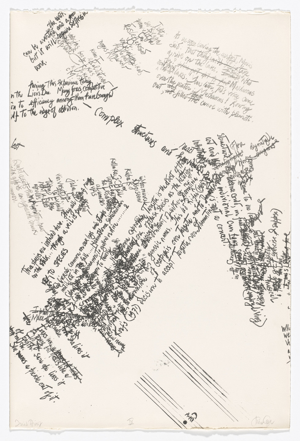John Cage. IX from Mushroom Book. (Print executed 1971-1972).