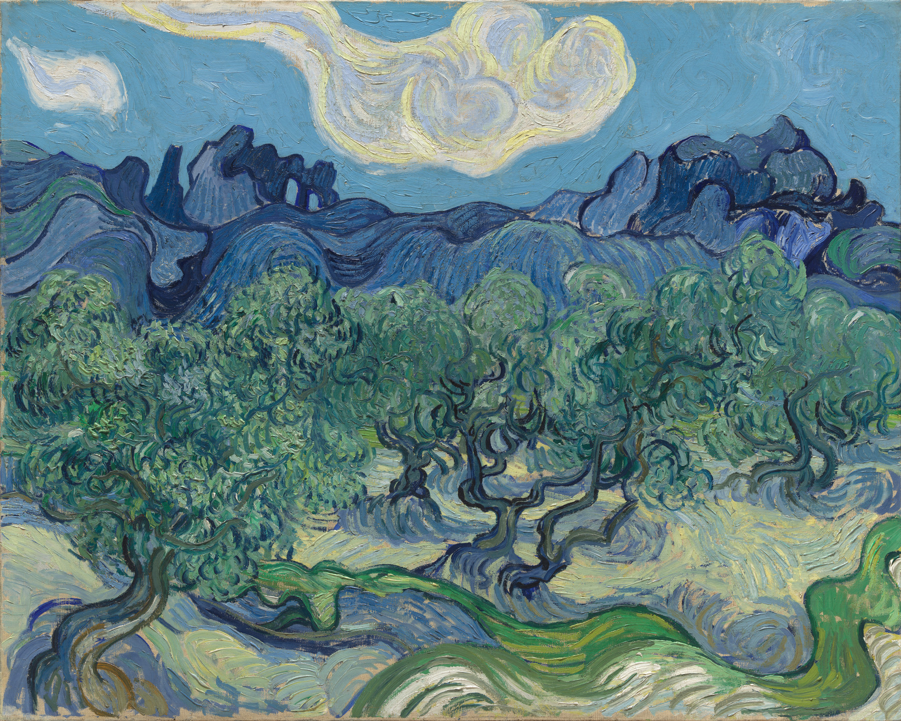 Vincent van Gogh. The Olive Trees. Saint Rémy, June-July 1889