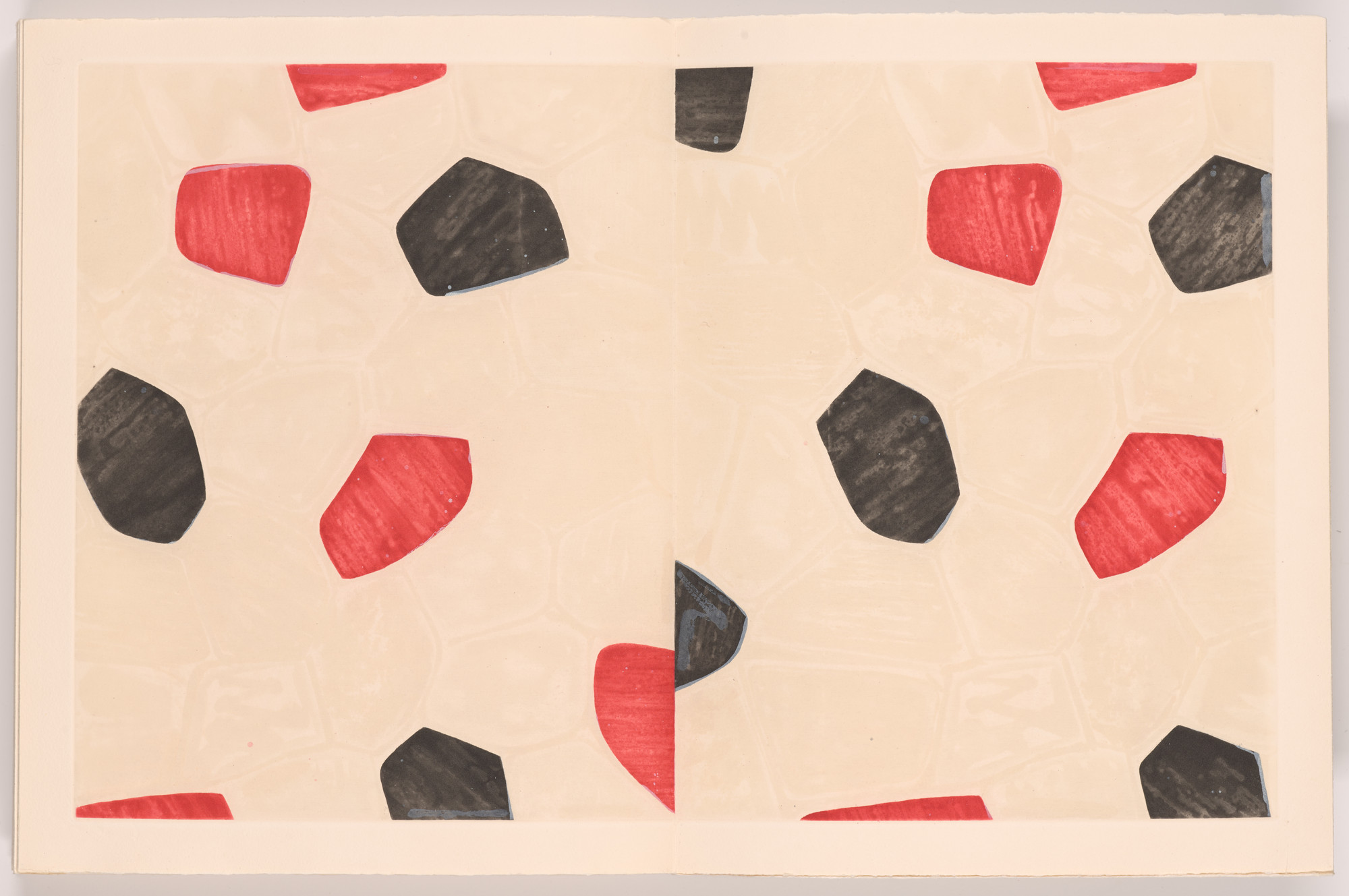 Jasper Johns. Flagstones (back endpaper) from Foirades/Fizzles. 1975–76, published 1976