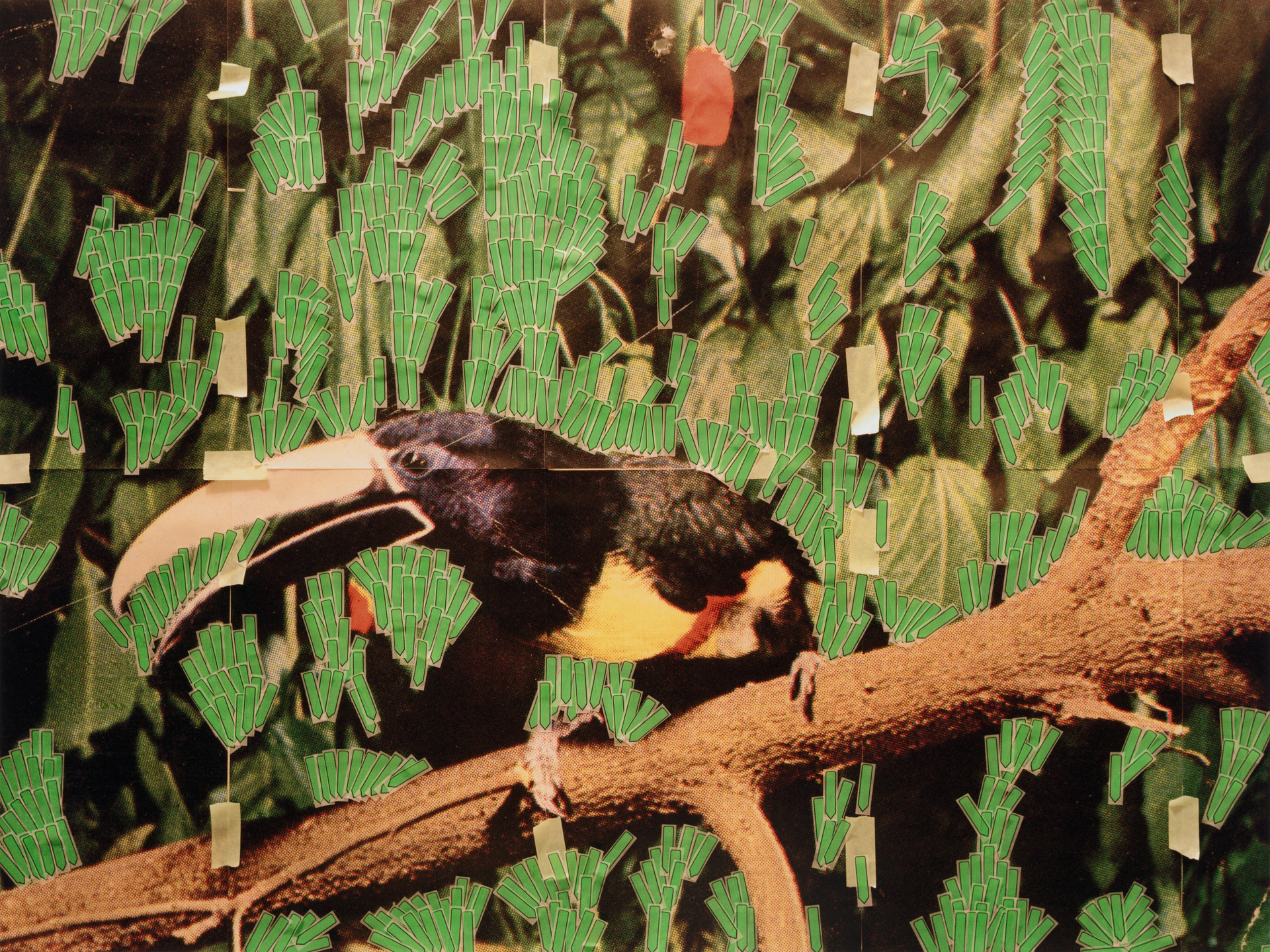 Sara Cwynar. Toucan in Nature (Post it Notes). 2013
