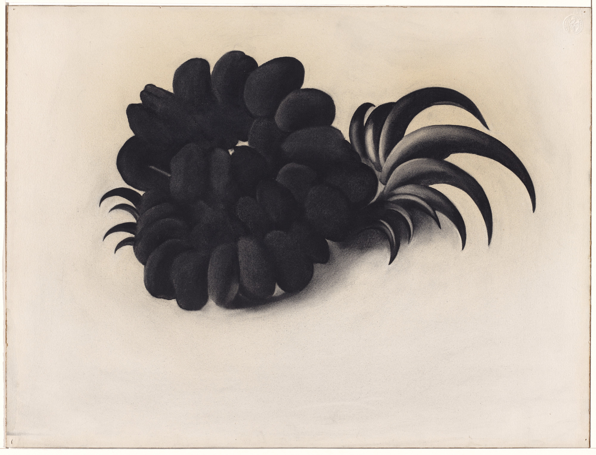 Georgia O'Keeffe. Eagle Claw and Bean Necklace. (1934)