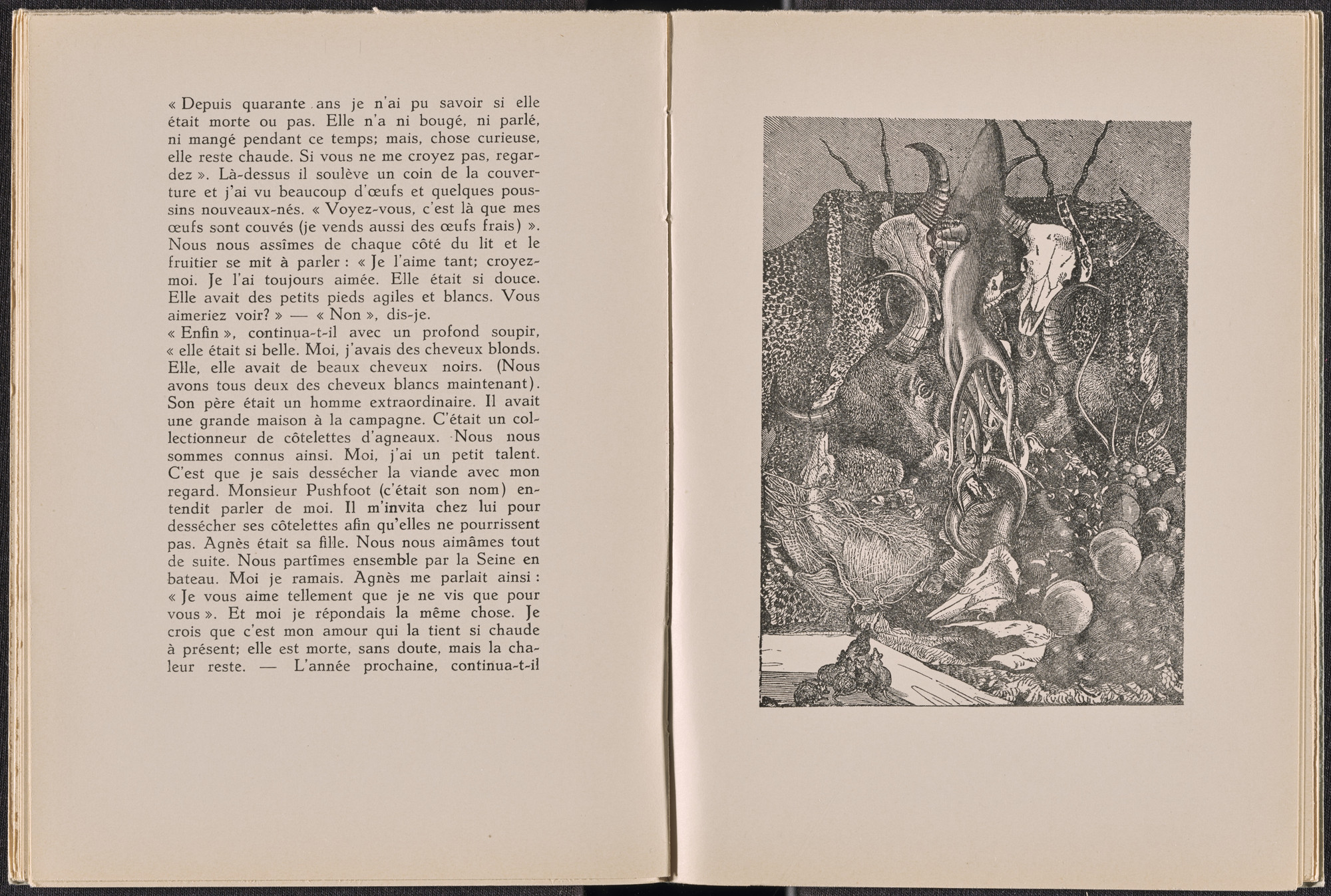 Max Ernst. Plate (folio 19) from La Dame ovale. 1939