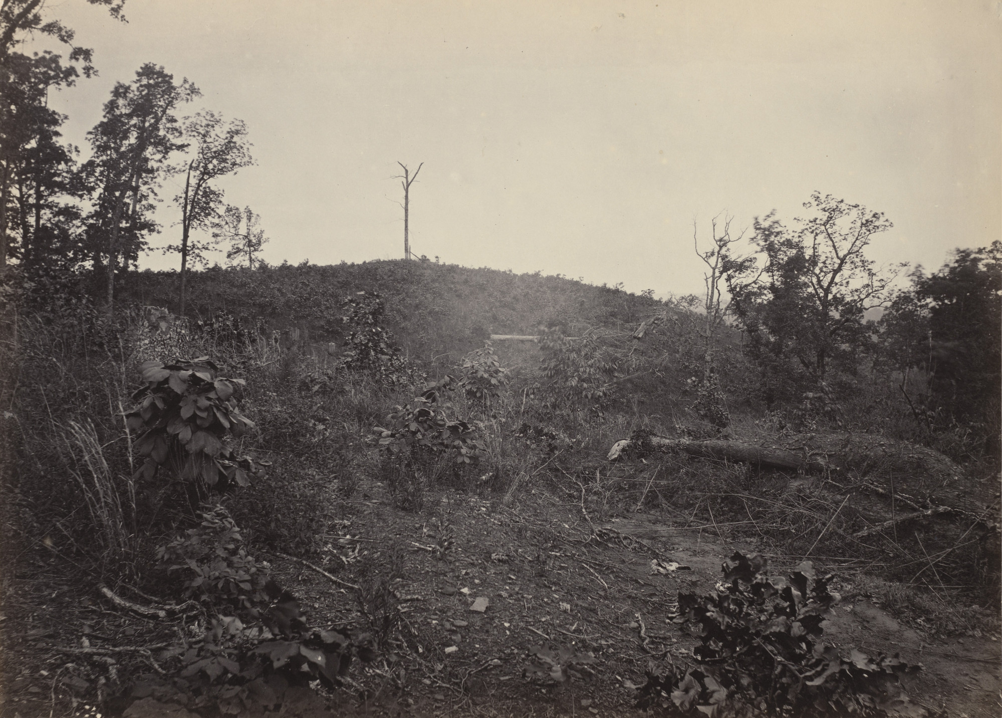 George Barnard. Pine Mountain from the album Photographic Views of Sherman's Campaign. 1864-65