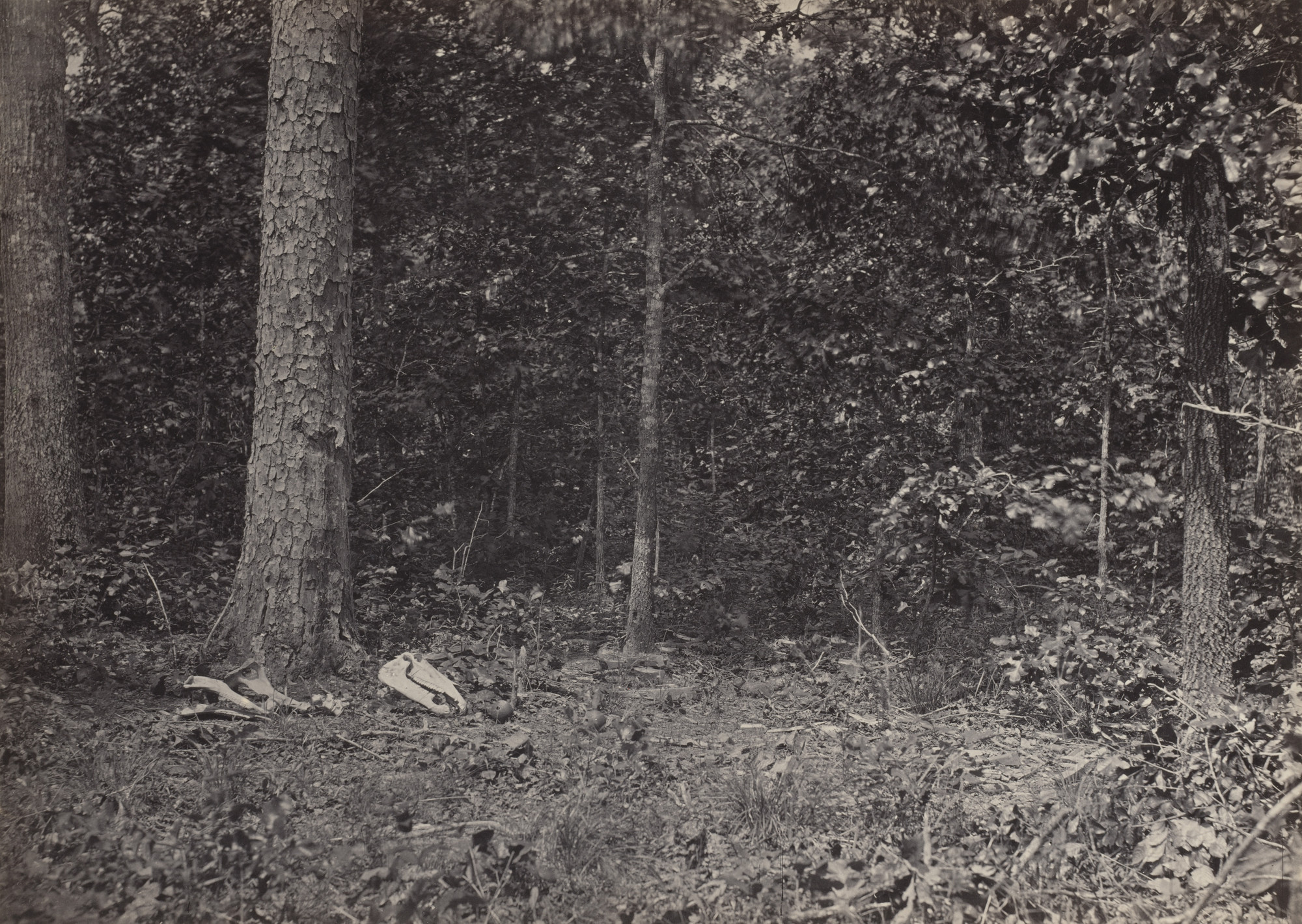 George Barnard. Scene of General McPherson's Death from the album Photographic Views of Sherman's Campaign. 1864-65