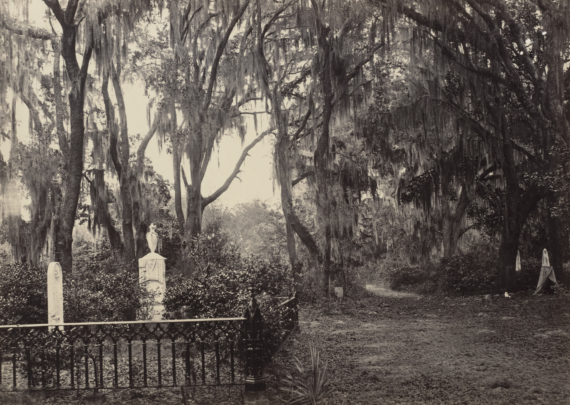 George Barnard. Buen Ventura, Savannah from the album Photographic Views of Sherman's Campaign. 1864-65