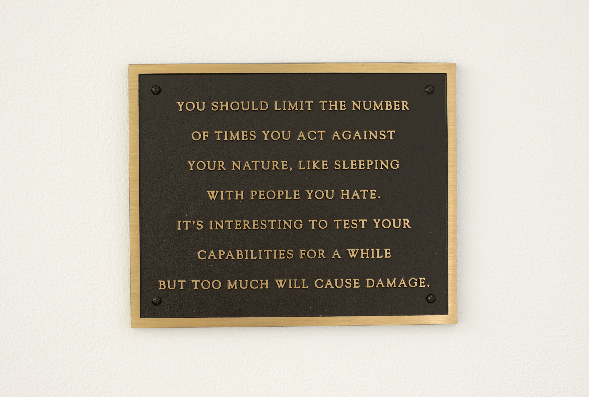 Jenny Holzer. Living: You should limit the number of times.... 1980-82