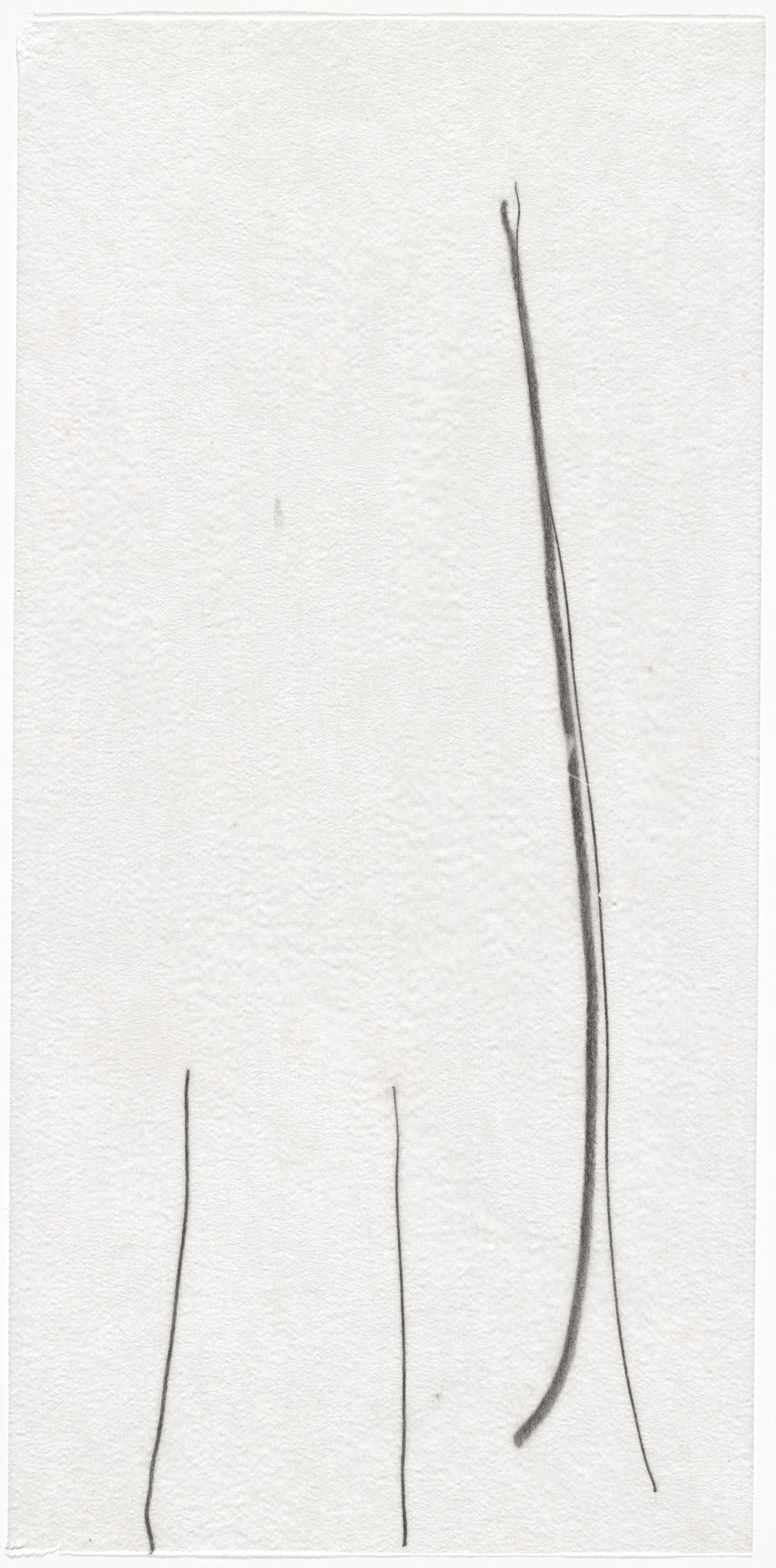 Mira Schendel. Untitled. 1960s
