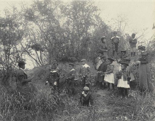 Frances Benjamin Johnston. Primary class studying plants. Whittier School. 1899-1900