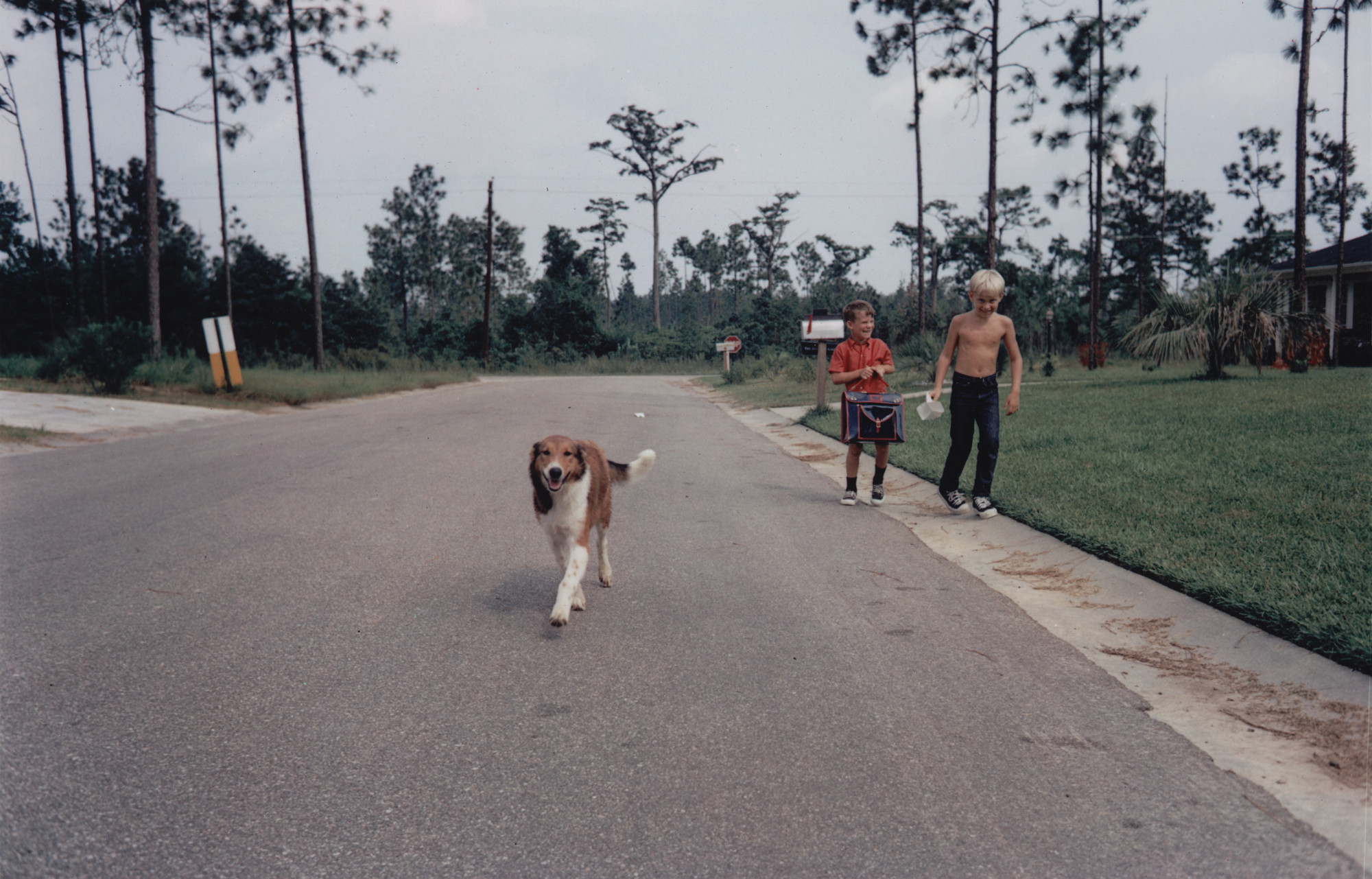 William Eggleston. Gulfport, Mississippi. c. 1969-70