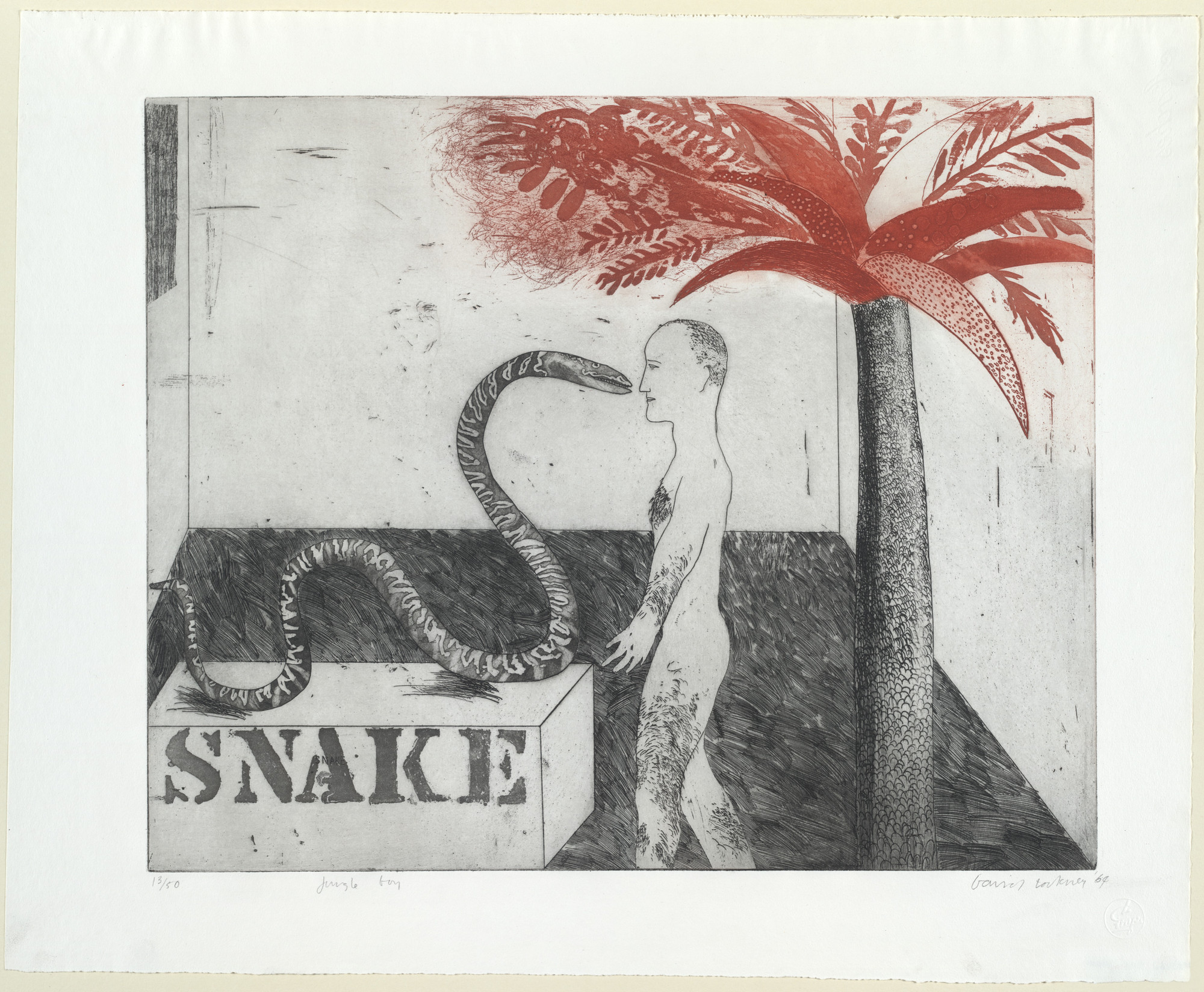 David Hockney. Jungle Boy. 1964