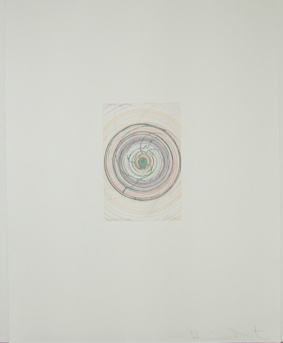 Damien Hirst. Spin me right round from In a Spin, the Action of the World on Things, Volume 1. 2002