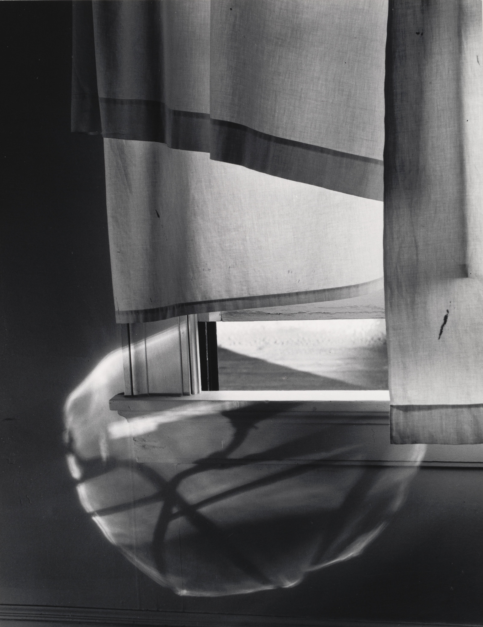 Minor White. Window Sill and Reflection. 1958