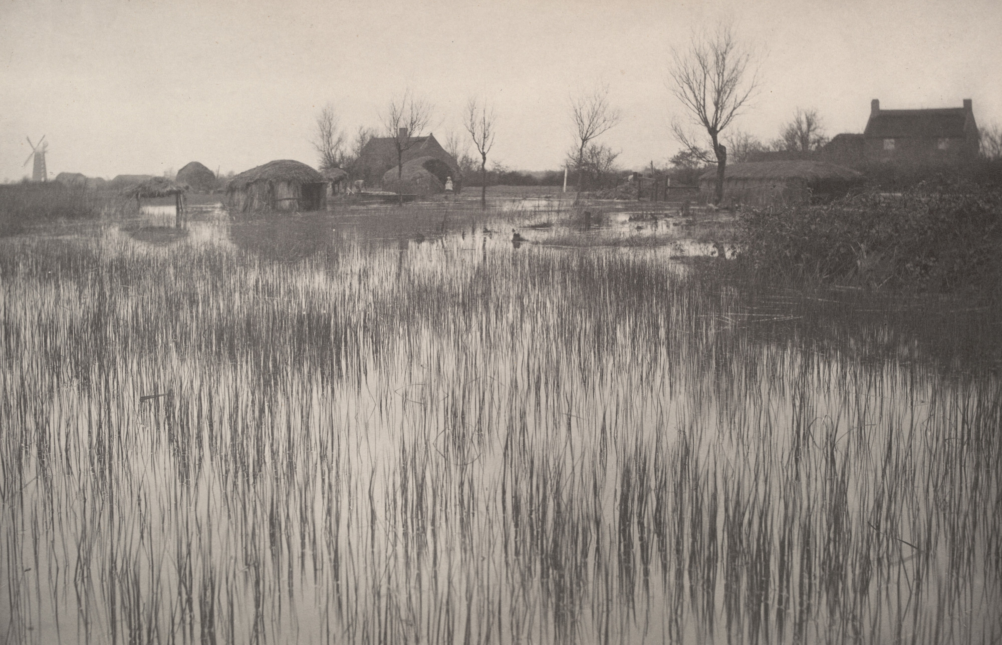 Peter Henry Emerson, T. F. Goodall. A Rushy Shore from Life and Landscape on the Norfolk Broads (1886). c. 1885