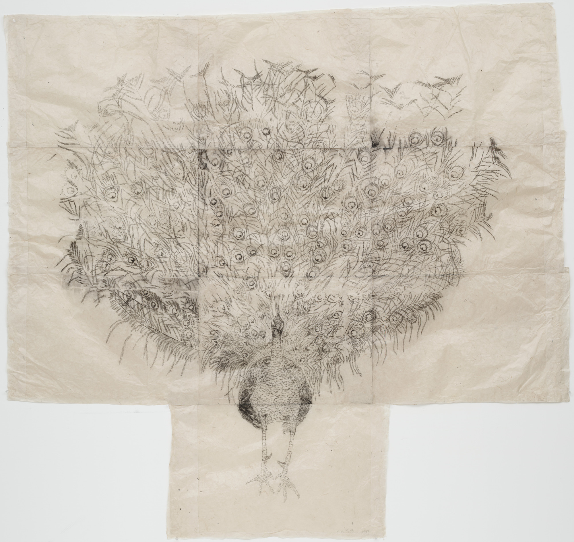 Kiki Smith. Peacock. 1997