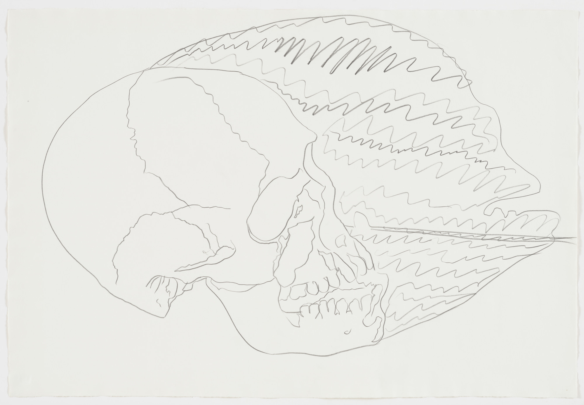 Andy Warhol. Untitled (Skull). (1976)