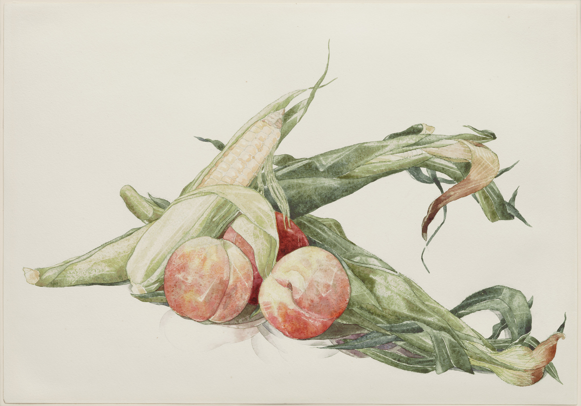 Charles Demuth. Corn and Peaches. 1929