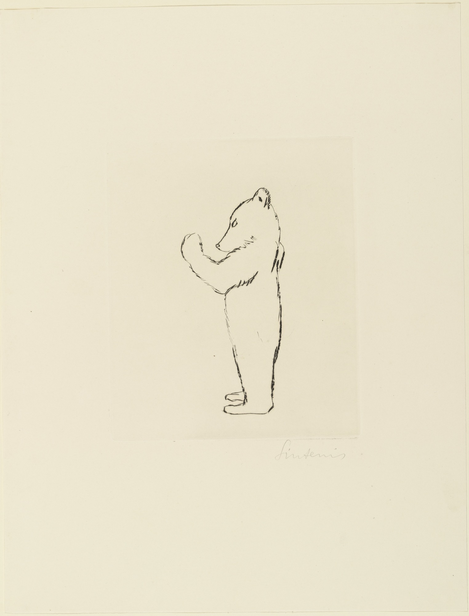 moma the collection renée sintenis standing bear cub stehendes