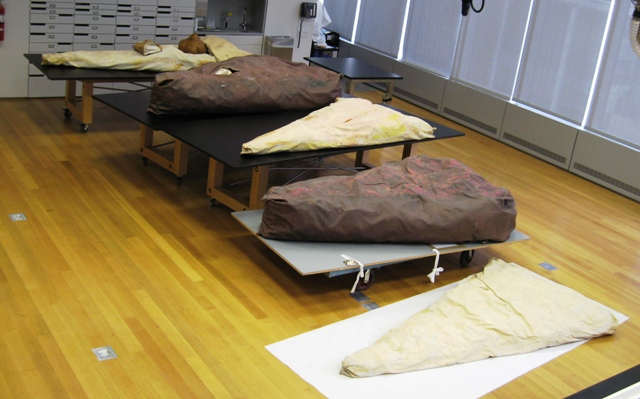 Moma Conservation Of Floor Cake Part 8