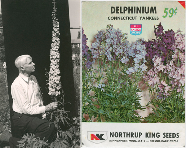 "Carl Sandburg with the ""Carl Sandburg"" delphinium (c. 1938), Umpawaug House (Redding, Connecticut). Photo by Edward Steichen. Gelatin silver print. Seed packet of ""Delphinium Connecticut Yankees,"" bred by Edward Steichen (c. 1973)"