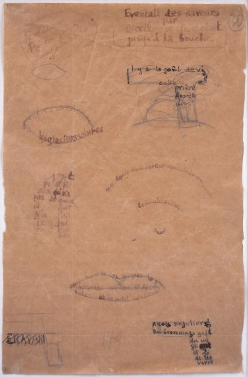 "Guillaume Apollinaire (1917-18) Revolver. Drawing for the calligramme ""Éventail des saveurs"" (""A Range of Flavors"") Ink and pencil on paper 9 3/4 × 6 3/8"" (24.8 × 16.2 cm) The Museum of Modern Art, New York. Committee on Drawings Funds"
