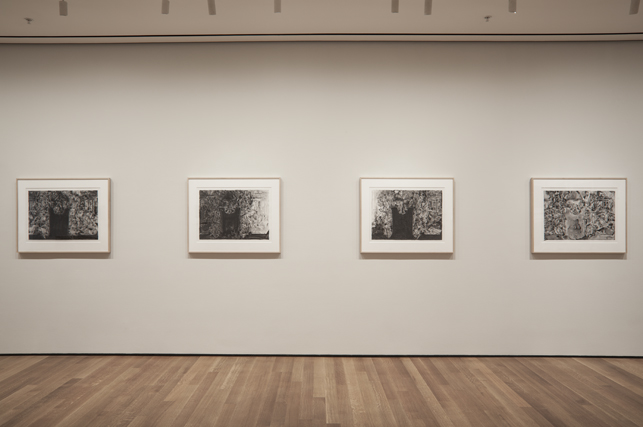 Installation view of Jasper Johns: Regrets, The Museum of Modern Art, New York, March 15 - September 1, 2014. Photo: John Wronn.