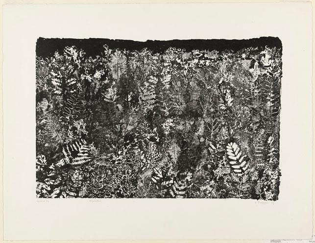 "Jean Dubuffet. Vegetation (Végétation). 1953. Lithograph, sheet: 19 13/16 x 25 3/4"" (50.3 x 65.4 cm). The Museum of Modern Art, New York. Gift of Mr. and Mrs. Ralph F. Colin, 1965. Photograph by John Wronn. © 2015 Artists Rights Society (ARS), New York/ADAGP, Paris"