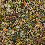 Soil-ornamented-with-vegetation-150x150