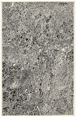 """Jean Dubuffet. Stone Transcription (Transcription aux pierres). 1958. Ink on paper, mounted on board, 9 1/8 x 14 1/4"""" (23.2 x 36.2 cm). The Museum of Modern Art, New York. The Joan and Lester Avnet Collection, 1978. Photograph by Peter Butler. © 2015 Artists Rights Society (ARS), New York/ADAGP, Paris"""