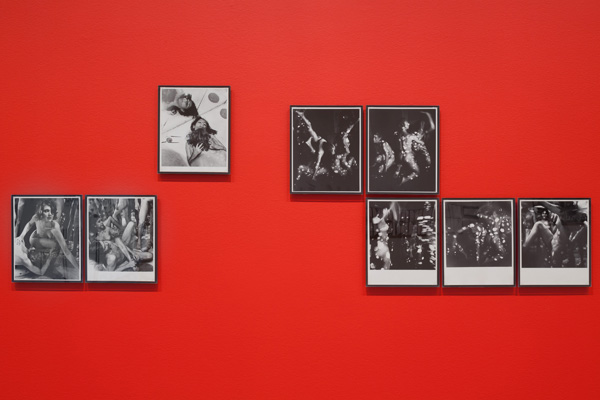 Installation view of Art on Camera: Photographs by Shunk-Kender, 1960–1971,  The Museum of Modern Art, New York. Photo: John Wronn