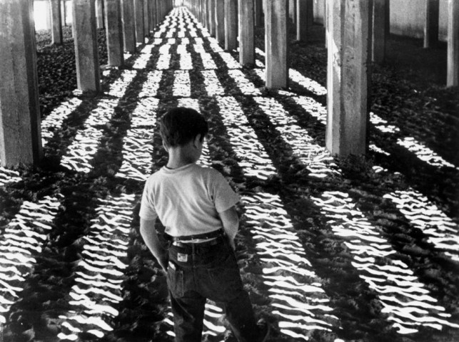 Little Fugitive. 1953. USA. Directed by  Ray Ashley, Morris Engel, and Ruth Orkin