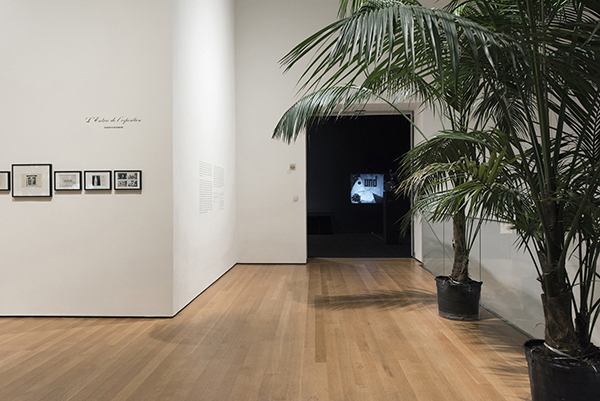 Installation view of Marcel Broodthaers: A Retrospective, The Museum of Modern Art, New York, February 14–May 15, 2016. © 2016 The Museum of Modern Art. Photo: Martin Seck
