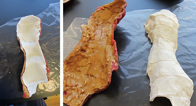 Left: A test application of the armature system inside the wax leg. Photo: Megan Randall; Right: The armature test removed from the leg